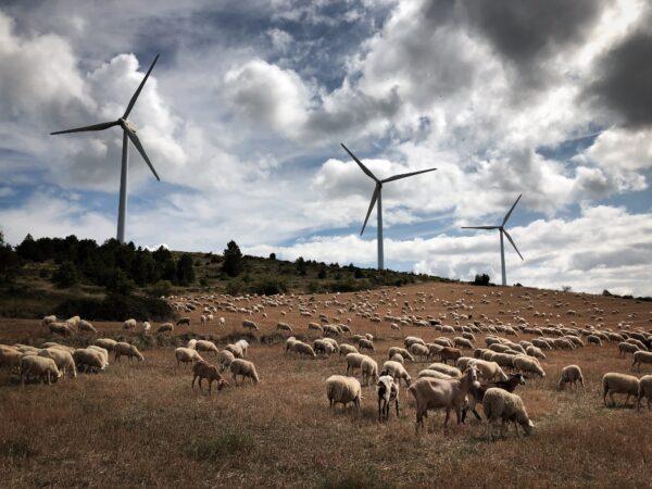 Wind farm. Navarre (Spain)